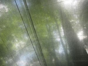 Cuben Fiber Tarp by Hammock Gear-4608