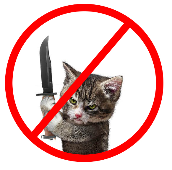 cat with knife