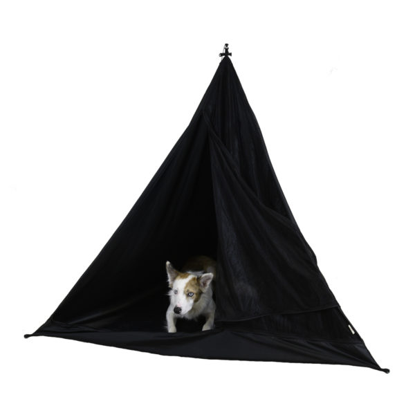 tent with dog inside