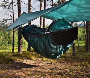 a clark hammock hanging in the woods